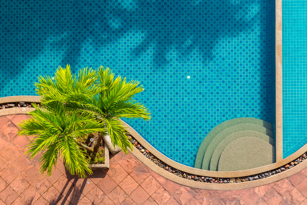 Vue du dessus, une piscine et une plante.